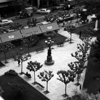 exarchia 1955